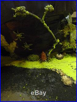 Dept 56, Lemax Display Platform! Crystal Cave For Halloween! Slimey Swamp